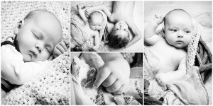 4er-Collage mit Portraits von Baby mit älterem Geschwisterkind in Schwarz/Weiß